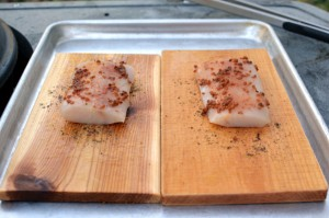 Backyard Provisions Plank Review
