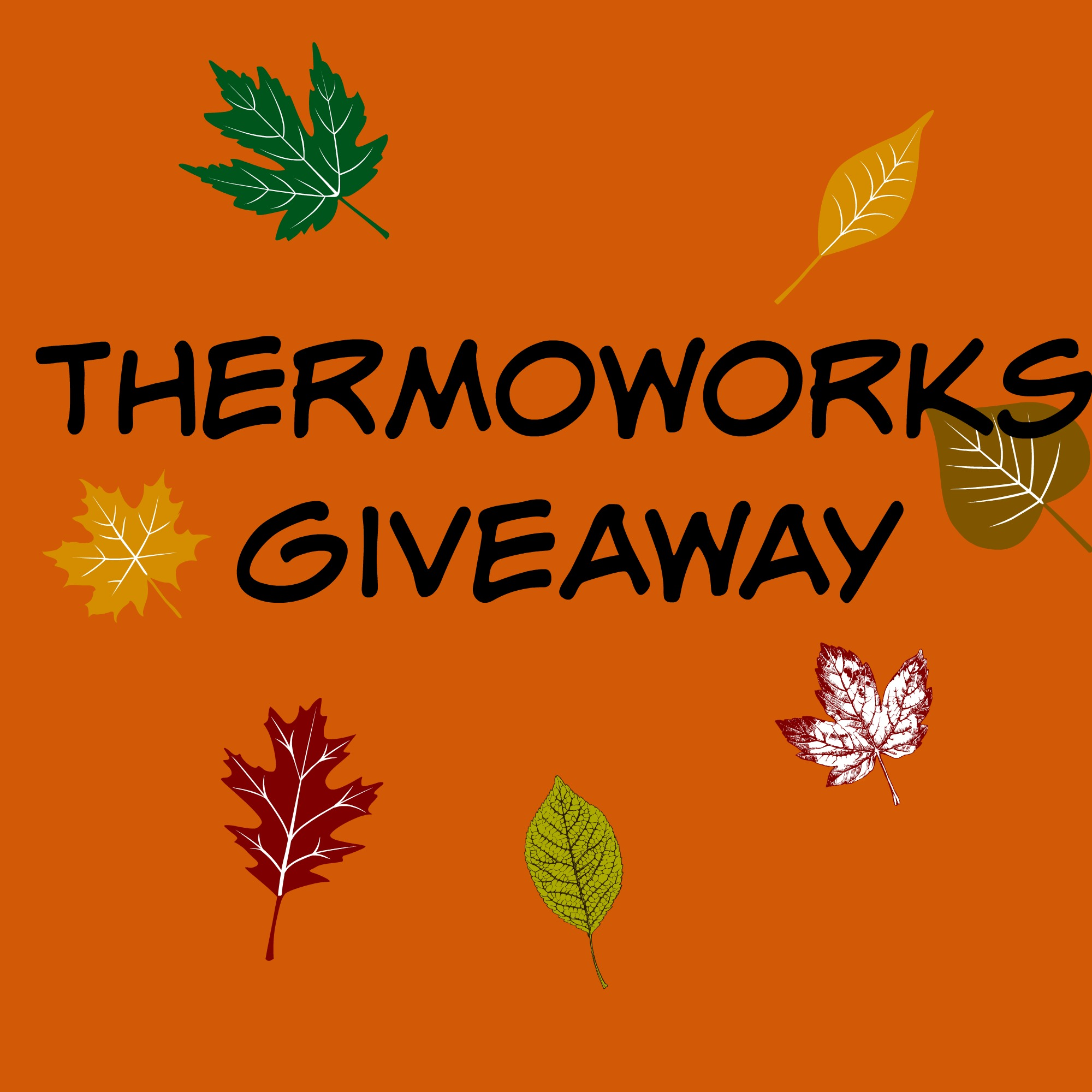 ThermoWorks Giveaway
